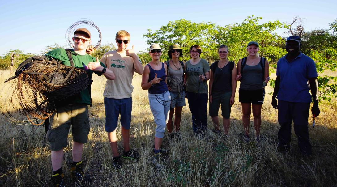 A group of Projects Abroad volunteers work together removing poaching snares during their wildlife project in Botswana.
